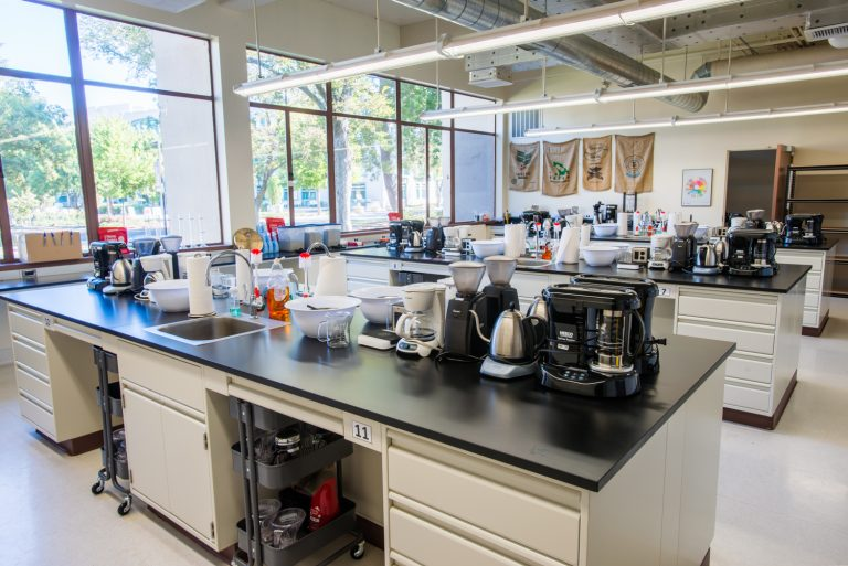 Undergraduate coffee lab