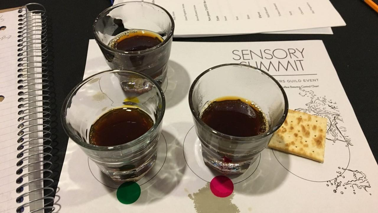 uc davis coffee center sensory summit 2020